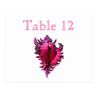Pink Fuscia Sea Shell Reception Table Numbers Postcard