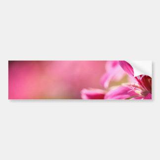Pink garden flower bumper sticker