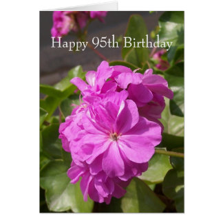 Pink Geranium 95th Birthday Greeting Card