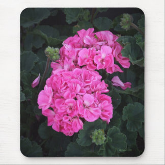 Pink Geraniums Mouse Mat