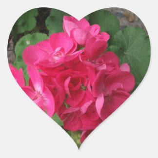 Pink Geraniums Heart Sticker
