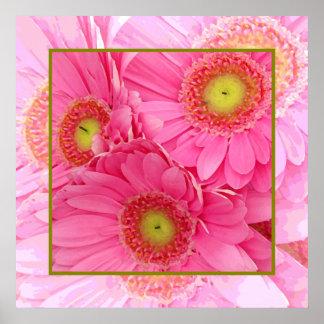 Pink Gerber Daisies Print