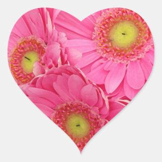 Pink Gerber Daisies Heart Sticker
