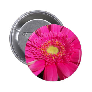 Pink Gerber Daisy 6 Cm Round Badge