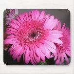 Pink Gerber Daisy Mouse Mat