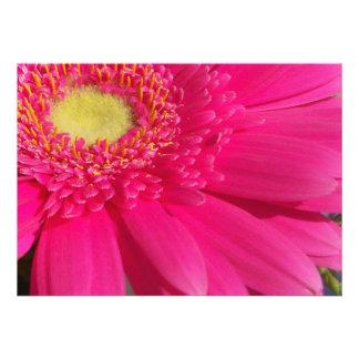 Pink Gerber Invitation Announcement