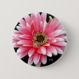 Pink Gerbera 6 Cm Round Badge