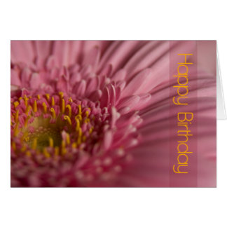 Pink Gerbera Birthday Card