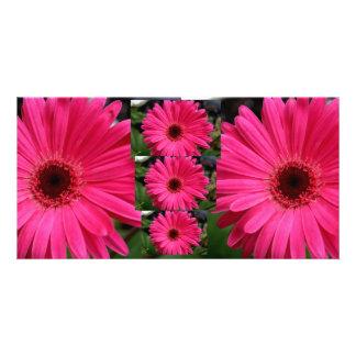 Pink Gerbera Daisies Customized Photo Card
