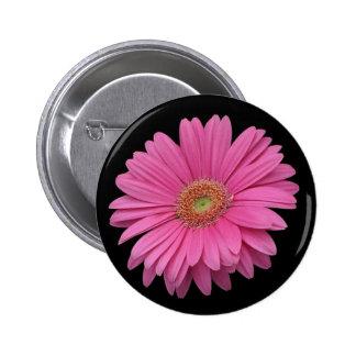 Pink Gerbera Daisy Buttons