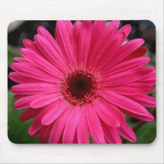 Pink Gerbera Daisy Mouse Mat