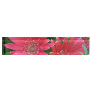 Pink Gerbera Daisy Name Plate