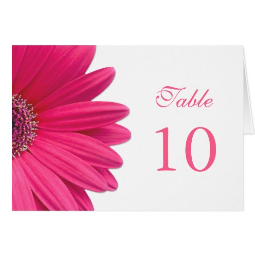 Pink Gerbera Daisy Wedding Table Card