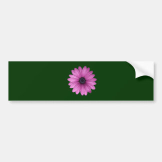 Pink Gerbera flower Bumper Sticker