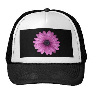 Pink Gerbera flower Cap