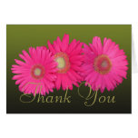 Pink Gerberas Colourful Photo Chic Floral Thank Note Card