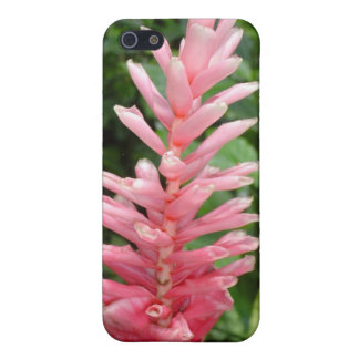 Pink Ginger iPhone 4 Case