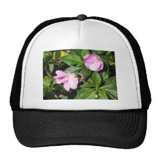 pink green flora hat