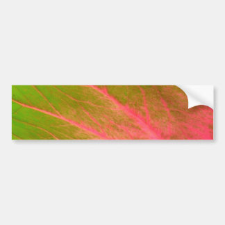 pink green leaf bumper stickers