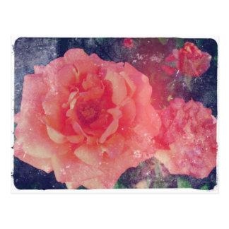 Pink Grunge Rose Postcard