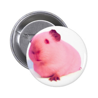Pink guinea pig buttons