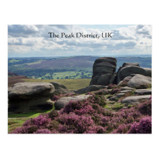 Pink Heather and Stone Postcard