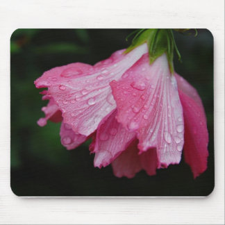 Pink hibiscus bloom mouse pad