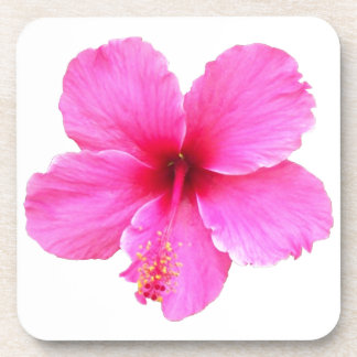 Pink Hibiscus Drink Coasters