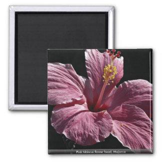 Pink hibiscus flower head, Majorca Magnets