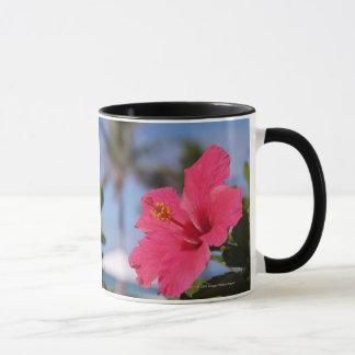 Pink hibiscus flower mug