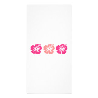 Pink hibiscus flowers photo greeting card