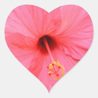Pink Hibiscus Heart Sticker