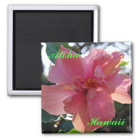 Pink Hibiscus in Hawaii Square Magnet