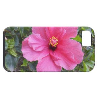 Pink Hibiscus iPhone 5 Case-Mate