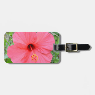 Pink Hibiscus Luggage Tag