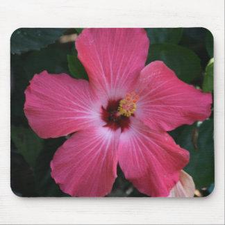 pink hibiscus mouse mat