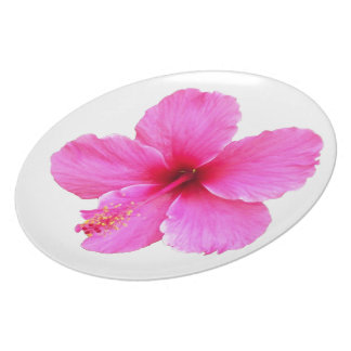 Pink Hibiscus Party Plates