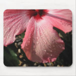 Pink Hibiscus Water Drops Mouse Mats
