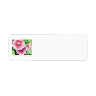 Pink Hollyhocks Return Address Label