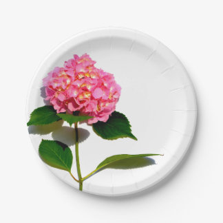 Pink hydrangea 7 inch paper plate