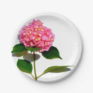 Pink Hydrangea 7 Inch Paper Plate