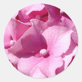 Pink Hydrangea Classic Round Sticker