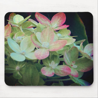 Pink Hydrangea Floral Mouse Mat