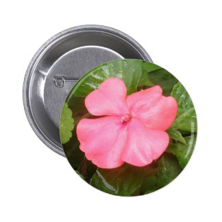 Pink Impatiens Flower Button