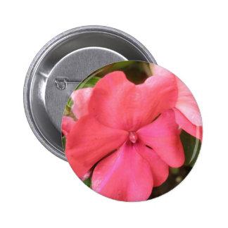 Pink Impatiens Flower Macro Button