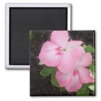 Pink Impatiens Flower Magnet