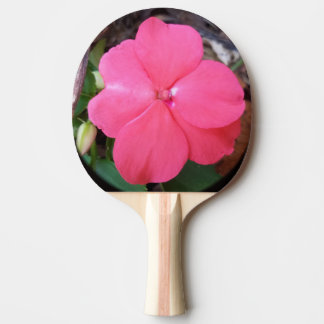 Pink Impatiens Ping Pong Paddle