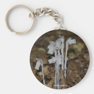 Pink Indian Pipe Mushrooms Nature Keychain Keyring