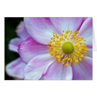 "Pink ""Japanese Anemone"" Card"