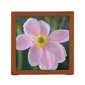 Pink japanese anemone flower desk organiser